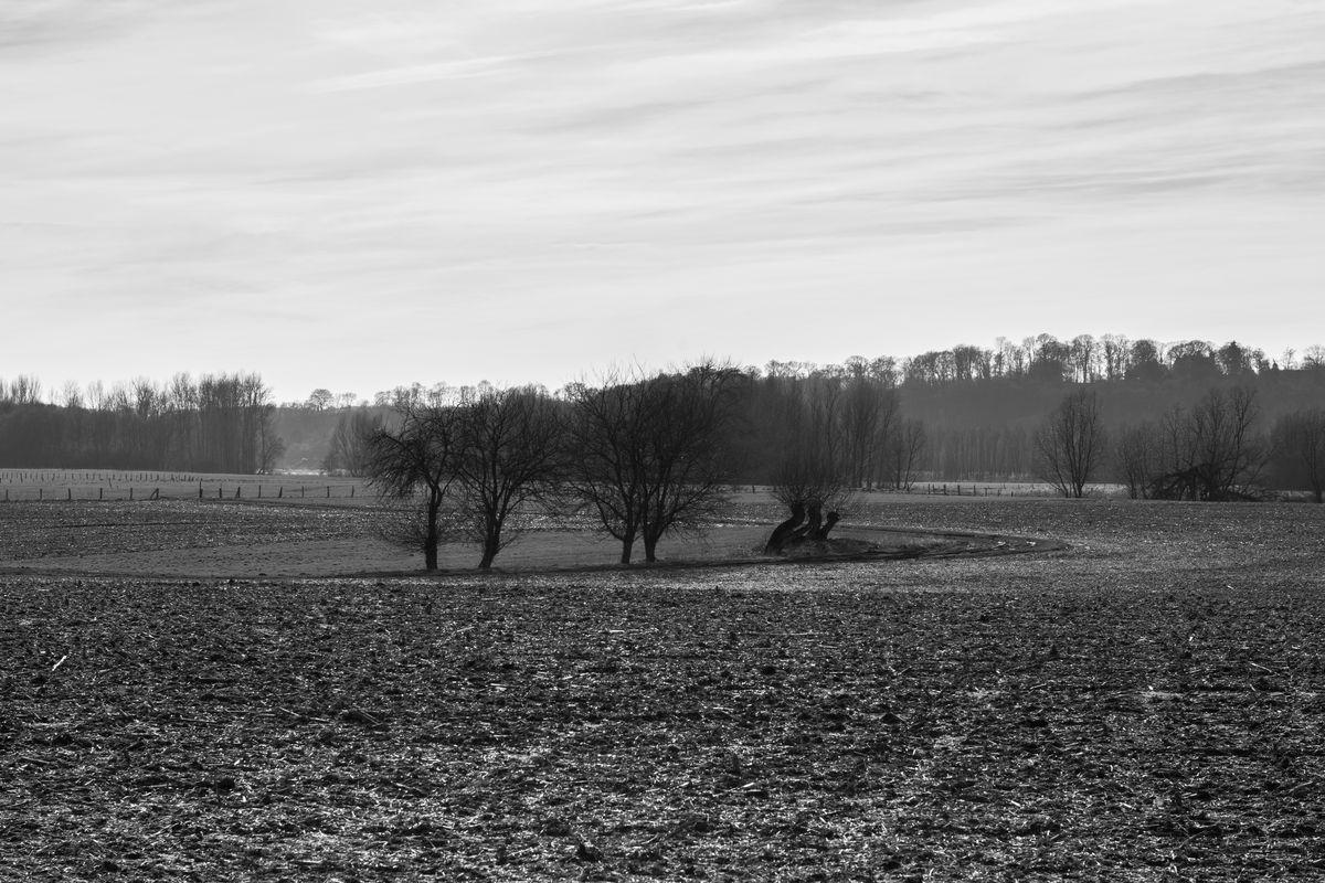 Fruehling 2015