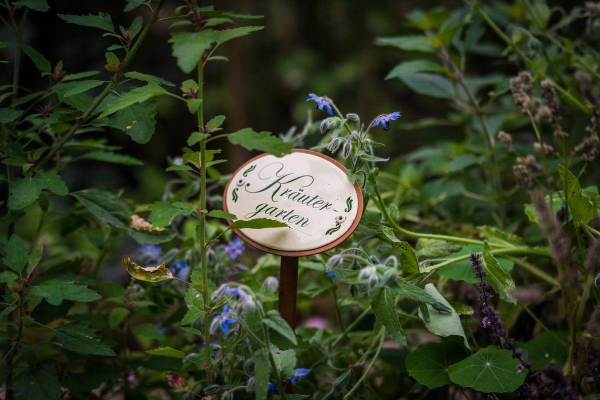 Garten Picker in Borken Weseke